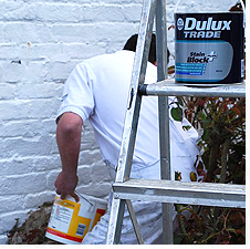 Using 'Dulux Stain Block Paint' on the exterior of the cottage